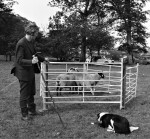 Trials, Sheep Show and Fell Race Record