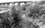 Viaduct From Colne Water