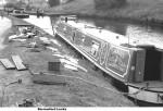 Dandy at Barrowford Locks