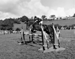 Horse Trials Draw Crowds