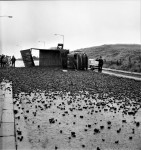 Coke Lorry Skids And Overturns (1 OF 3)