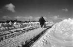 Farmers Fear Icy Blasts